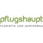 Pflugshaupt, Sursee